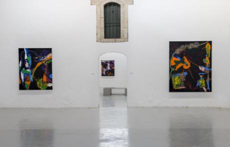 Vue d'exposition, Adam Saks, L.A.C. 2018 ©d.huguenin